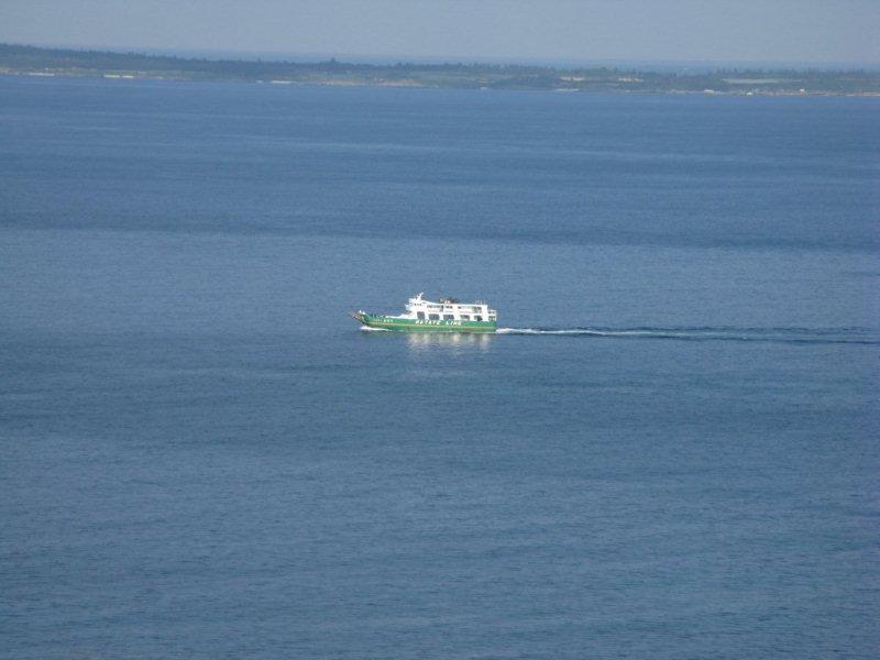 伊良部島はやてリサイズIMG_0428