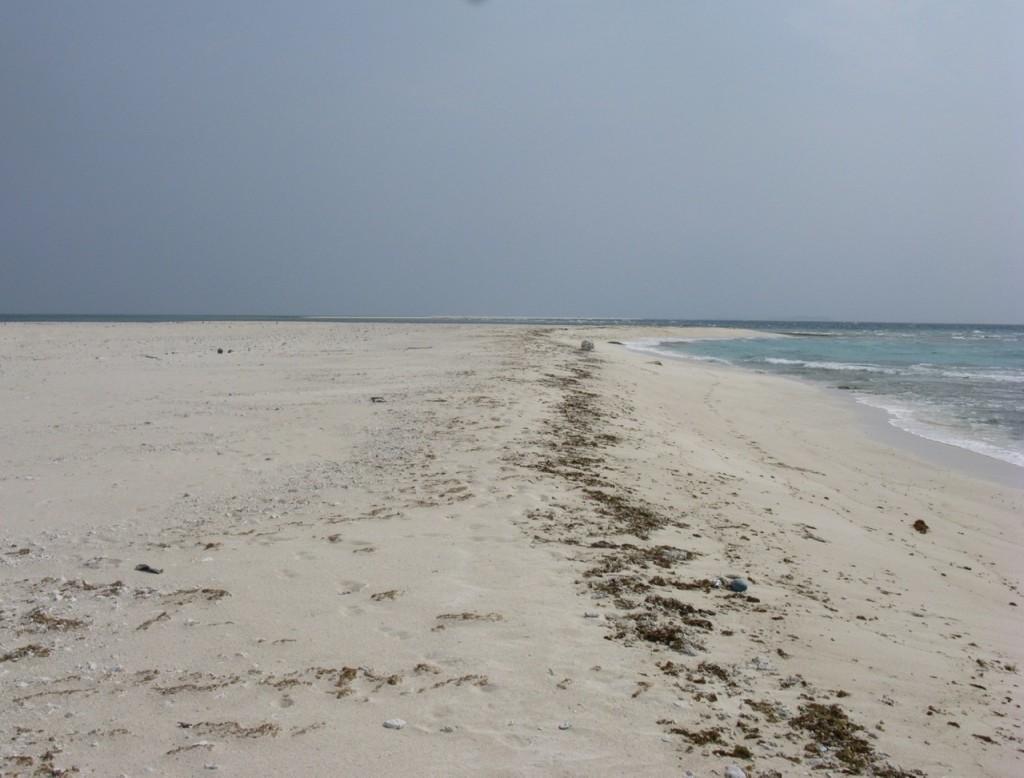 久米島はての浜 19DA34DE-B53A-4829-8C6F-6D30F4E537A6