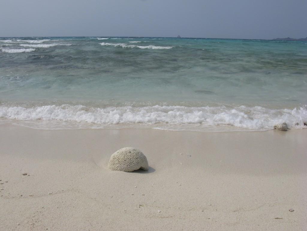 久米島はての浜 9D5B05DF-3DEE-40F5-B1F6-85630262A3F3