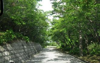 久米島IMG_4086