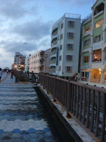 砂辺遊歩道IMG_2334
