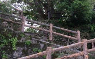 首里城付近の公園への階段IMG_2443