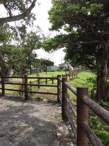 首里城付近の公園IMG_2452