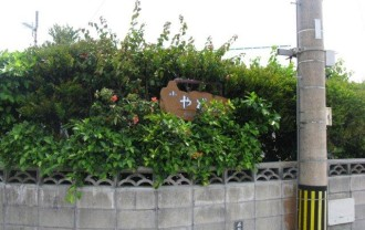 久高島小やどSAWAIMG_4735
