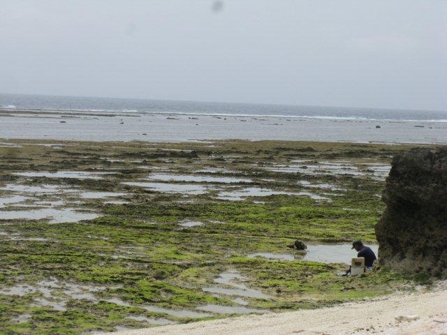 久高島釣り人の日々IMG_4776