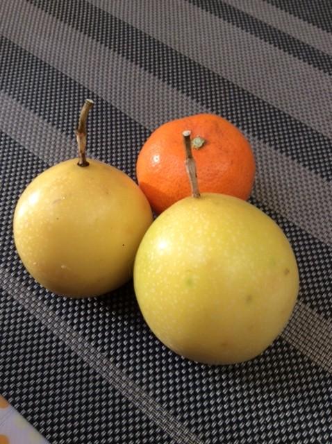 ジャンボパッションフルーツの実IMG_1949
