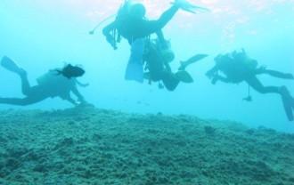 宮古島ダイビング
