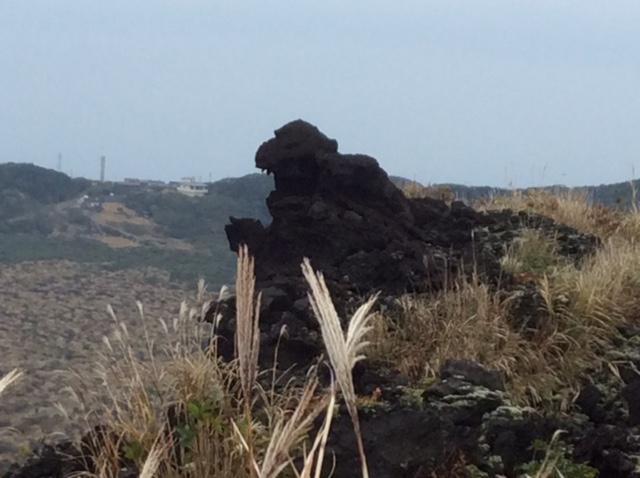 伊豆大島 三原山遊歩道 ゴジラ岩