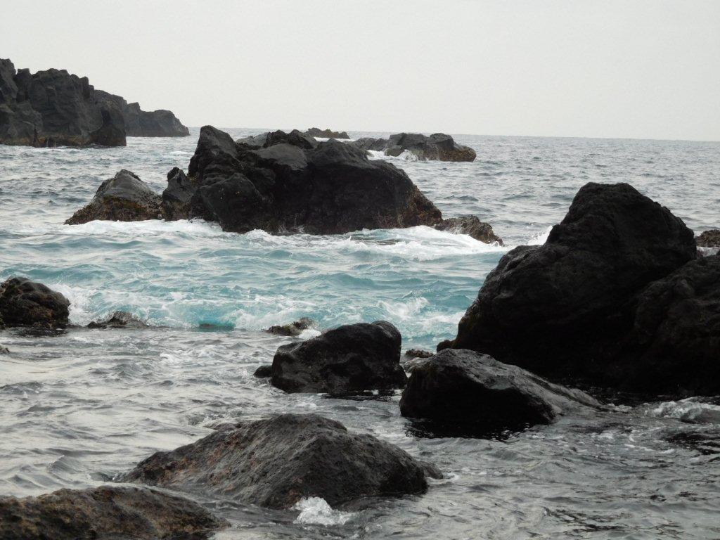 伊豆大島 トウシキ